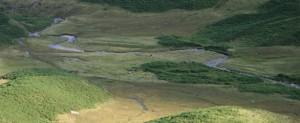 A series of meanders