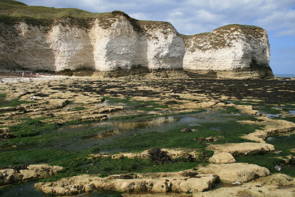 The waver cut platform at Selwicks Bay, Flamborough.
