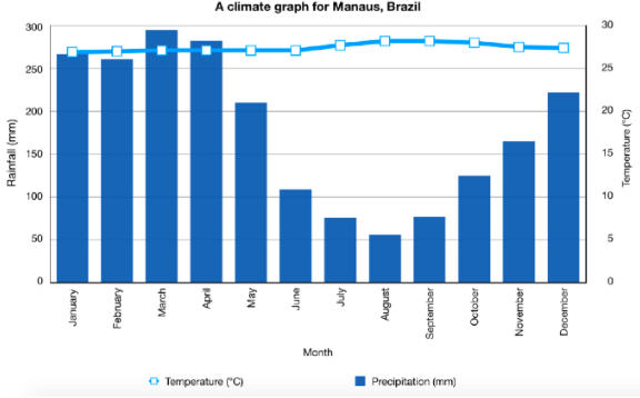 Climate Graph for Manaus, Amazon Rainforest